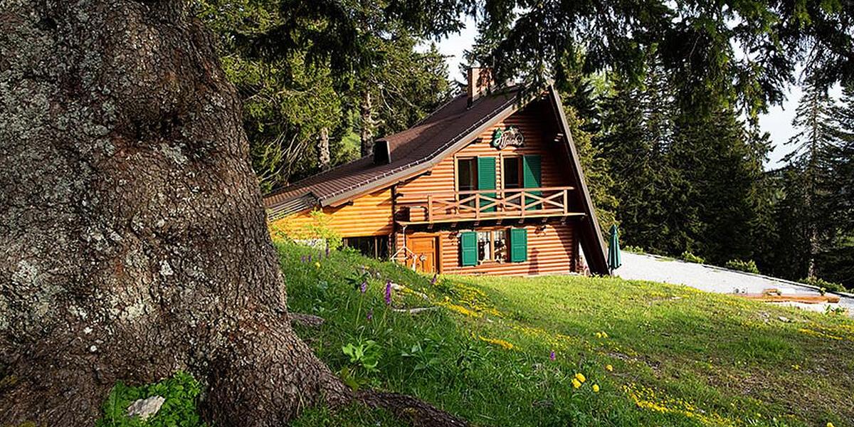 Family apartments Chalet Alpinka Slovenia.